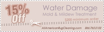 Water Damage Coupons